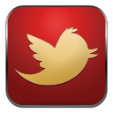 Anoukis Multimedia sur Twitter